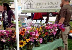 Wright-Locke Farm at the winchester farmers market